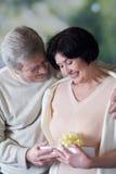 Coppie felici anziane con giftbox, sorridente ed abbracciante immagini stock libere da diritti