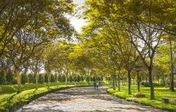 Coppie felici che camminano insieme verso l'estremità della strada Fotografie Stock