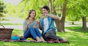Coppie felici che hanno un picnic stock footage