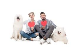 coppie felici con i cani samoiedi ed i cuori di carta su bianco, biglietti di S. Valentino fotografia stock