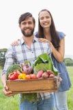 Coppie felici con la scatola di veg Immagine Stock Libera da Diritti