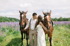 Coppie felici di nozze con i cavalli fotografie stock