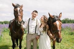 Coppie felici di nozze con i cavalli immagine stock