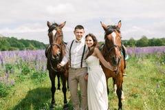 Coppie felici di nozze con i cavalli immagini stock libere da diritti