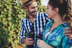 Coppie felici in vigna prima della raccolta Immagini Stock Libere da Diritti