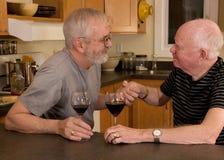 Coppie gaie mature che mangiano vino Immagini Stock