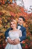 Coppie giovani attraenti di stupore nel giorno delle nozze sposa in vestito lungo bianco elegante ed in mazzo blu a disposizione, immagine stock libera da diritti
