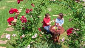 Coppie giovani che godono dell'alimento e del vino nel bello giardino di rose nella data romantica, nella vista superiore aerea d immagini stock libere da diritti