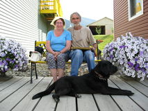 Coppie il giorno caldo con il cane fotografia stock