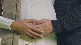 Coppie incinte che segnano insieme pancia, bambino atteso da tempo di amore, visita prenatale archivi video