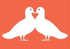 Coppie le colombe nella carta del biglietto di S. Valentino dell'illustrazione di amore Immagini Stock Libere da Diritti