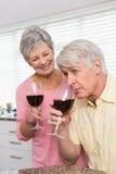 Coppie maggiori che bevono vino rosso Fotografia Stock Libera da Diritti