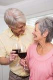 Coppie maggiori che bevono vino rosso Immagini Stock Libere da Diritti