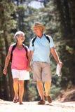 Coppie maggiori che camminano nel paese Fotografia Stock Libera da Diritti