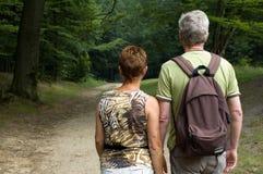 Coppie maggiori che fanno un'escursione -1 Immagini Stock Libere da Diritti
