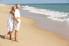 Coppie maggiori che godono della festa della spiaggia al sole Fotografie Stock Libere da Diritti