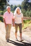 Coppie maggiori sulla camminata del paese Fotografie Stock