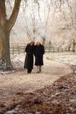 Coppie maggiori sulla camminata di inverno Fotografia Stock