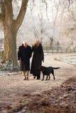 Coppie maggiori sulla camminata di inverno con il cane Immagine Stock