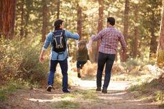 Coppie maschii gay con la figlia che cammina attraverso il terreno boscoso di caduta fotografie stock libere da diritti