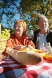 Coppie mature alla tabella di picnic fotografia stock
