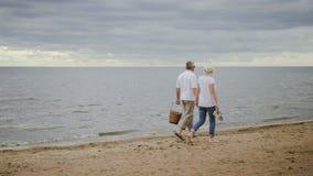 Coppie mature di smania dei viaggi che godono della passeggiata sul litorale dell'oceano archivi video