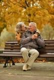 Coppie mature romantiche Immagine Stock