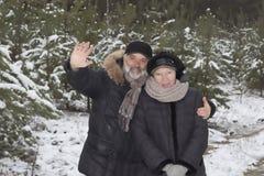 Coppie mature in una foresta nevosa Immagini Stock