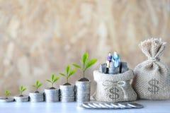 Coppie miniatura che stanno sulla borsa dei soldi e pianta che cresce sulla moneta fotografia stock