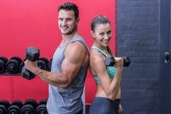 Coppie muscolari che restituiscono alla parte posteriore Fotografia Stock