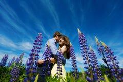 Coppie nel giacimento di fiori del lupino fotografia stock libera da diritti
