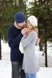 Coppie nell'amore nella sosta nell'inverno Immagine Stock