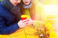 Coppie nell'amore in parco in autunno Fotografia Stock Libera da Diritti