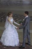 Coppie nuovo-sposate felici fotografia stock