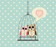 Coppie Owl In Cage con amore Fotografia Stock Libera da Diritti