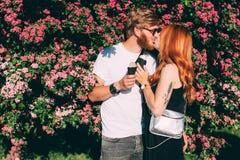 Coppie in parco che mangia i coni gelati Fotografie Stock