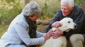 Coppie pensionate con il loro cane stock footage