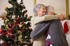 Coppie senior che abbracciano accanto al loro albero di Natale Fotografie Stock Libere da Diritti