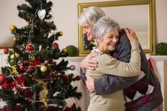 Coppie senior che abbracciano accanto al loro albero di Natale Fotografia Stock Libera da Diritti