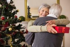 Coppie senior che abbracciano accanto al loro albero di Natale Immagine Stock