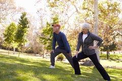Coppie senior che allungano mentre esercitandosi insieme nel parco immagine stock libera da diritti