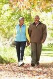 Coppie senior che camminano attraverso Autumn Woodland Fotografie Stock