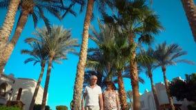 Coppie senior che camminano e che parlano sotto le palme dall'hotel La gente che gode della vacanza Tutto l'incluso video d archivio