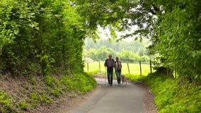 Coppie senior che camminano il cane e l'escursione video d archivio