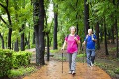 coppie senior che fanno un'escursione sul Forest Park immagini stock
