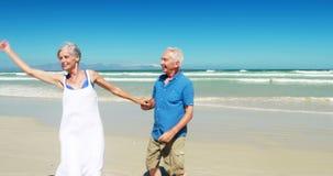 Coppie senior che godono insieme alla spiaggia stock footage