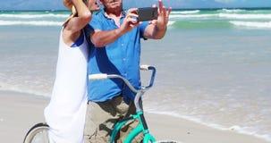 Coppie senior che prendono un selfie sulla spiaggia archivi video