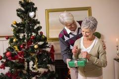 Coppie senior che scambiano i regali dal loro albero di Natale Fotografia Stock