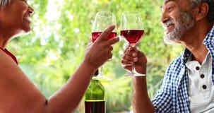 Coppie senior che tostano i bicchieri di vino a casa archivi video