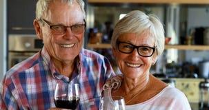 Coppie senior con il vetro di vino che esamina macchina fotografica 4k video d archivio